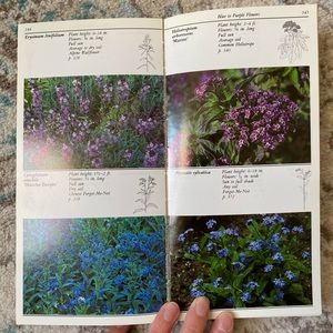 Vintage Accents - Taylor's Guide to Annuals Book
